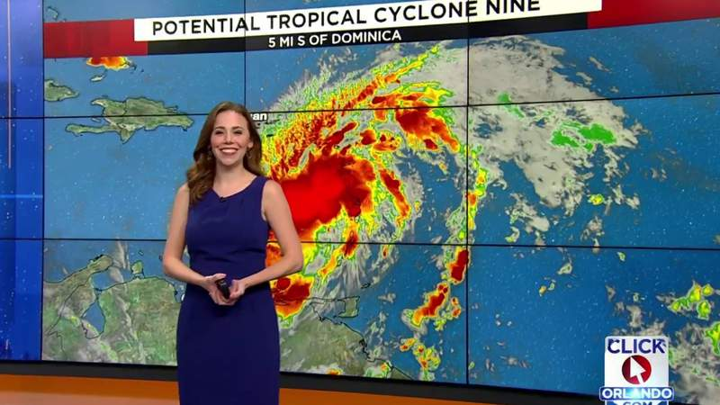 Cone, computer models, updates for system expected to become Isaias on path toward Florida