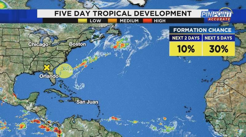Tropical development