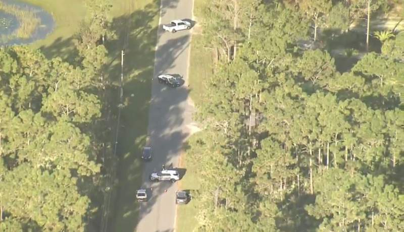 A pedestrian was struck and killed in Orange County.