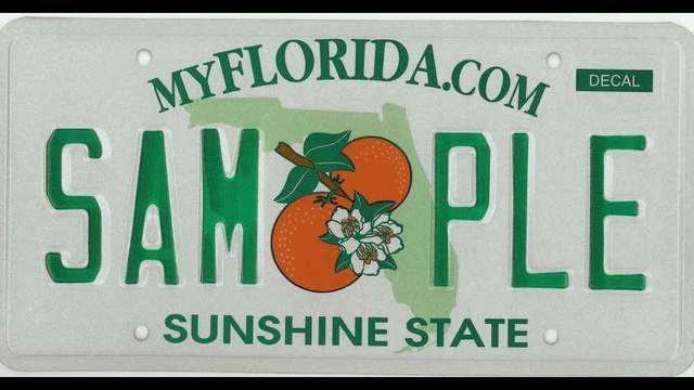 Relegation: Private college's specialty plate discontinued under new Florida law