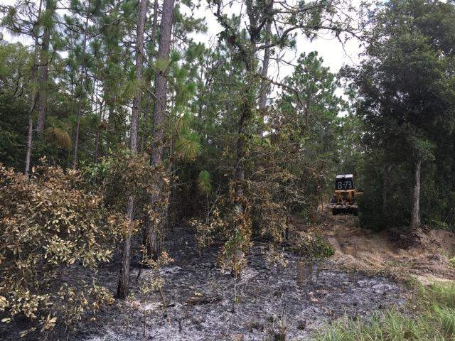 The wildfire occurred near the intersection of State Road 41 and County Road 328, officials say.