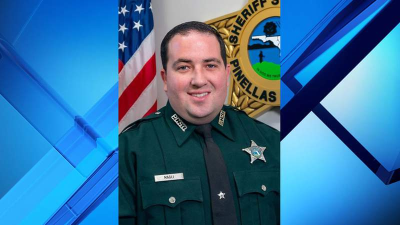 A deputy with the Pinellas County Sheriff's Office was killed in the line of duty on Wednesday afternoon, according to investigators.
