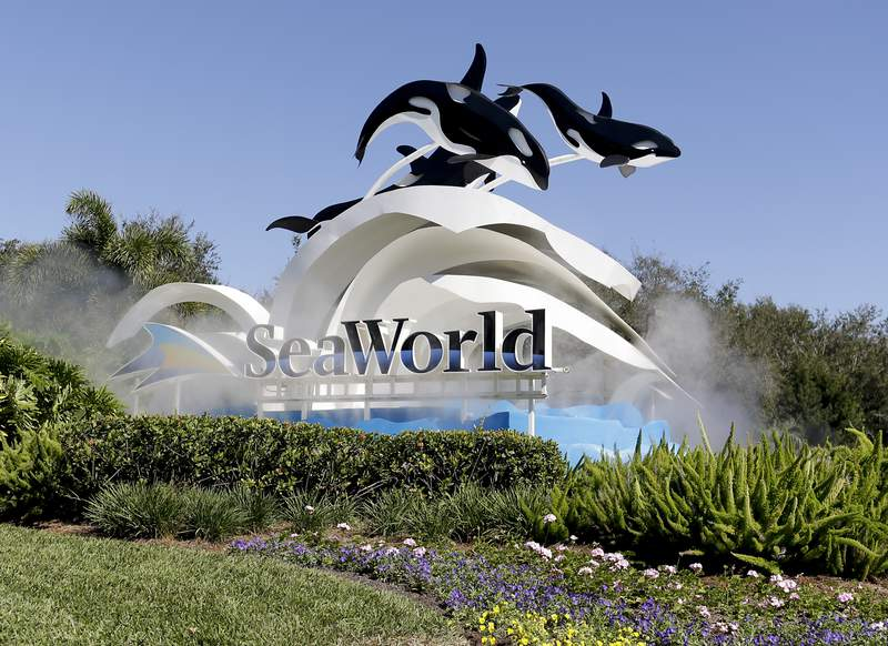 FILE - This Jan. 31, 2017, file photo shows the entrance to SeaWorld in Orlando, Fla. Florida tourism officials say cases of the new coronavirus are having little visible impact on the state's biggest industry so far. Orlando is the nation's most visited tourist destination, bringing vast numbers of people from around the globe to its major theme parks, which also include Universal Orlando and SeaWorld Orlando. Officials with Busch Gardens and SeaWorld hasn't responded to email inquiries about how the coronavirus had affected them, as of Sunday evening, March 8, 2020. (AP Photo/John Raoux, File)