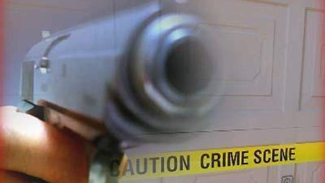 85 -- Percent of public schools reporting one or more incidents of violence, theft or other crimes on school property during the 2009-10 school year.