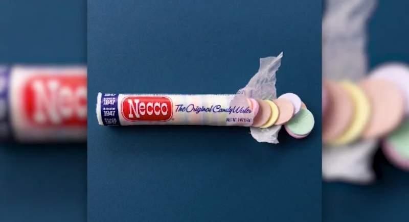 Necco Wafers are making a comeback. (Credit: Spangler Candy Company)