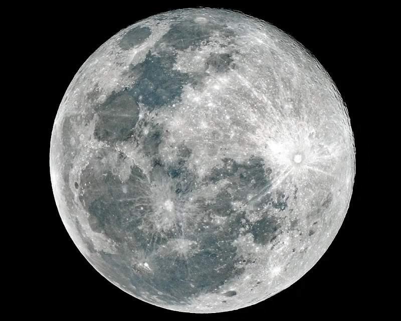 Full Wolf Moon on Jan. 28, 2021 Photo: Dale Gray, Ocala