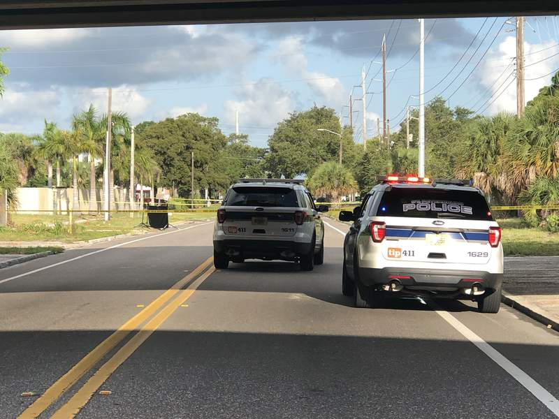 St. Pete police say a human head was found alongside a road.