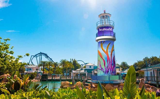 New enhancements coming to SeaWorld Orlando