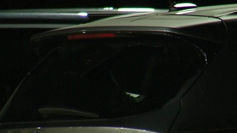 More than a dozen cars shot in interstates