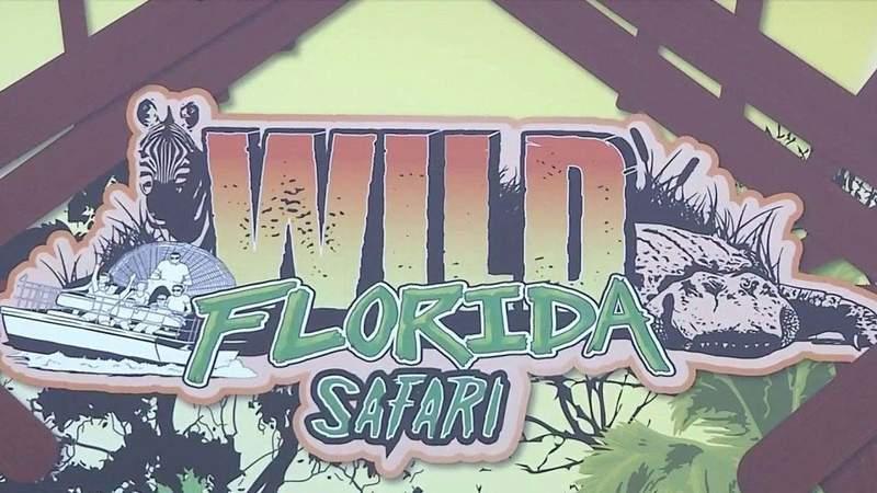 Image courtesy of Wild Florida