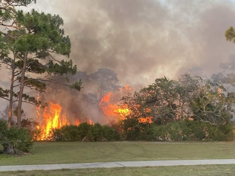 A brush fire on June 10, 2021 at Melbourne's Wickham Park.