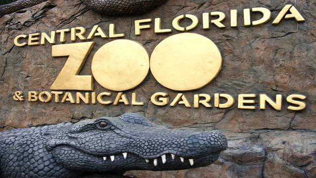 Image courtesy of the Central Florida Zoo
