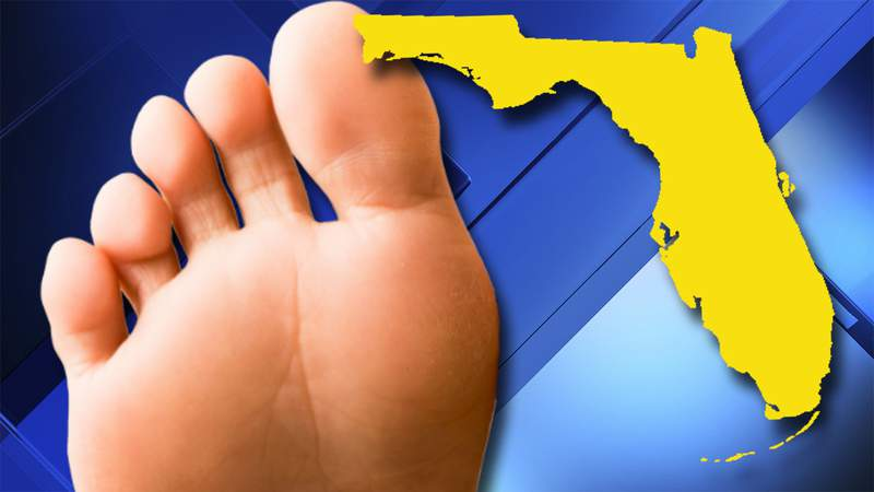 Florida police searching for toe-sucking suspect