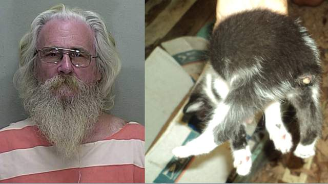 James Reid and one of the kittens after deputies say it had its tail cut off.