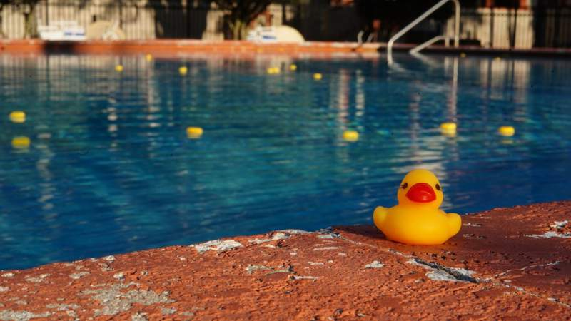 Students at Flagler College added an army of rubber ducks to the school pool Friday as a prank to the college's efforts to shoo away pesky ducks.
