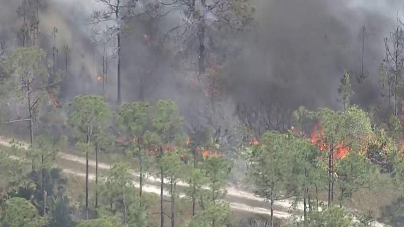 I-95 in Brevard County reopens as firefighters battle 1,600-acre wildfire