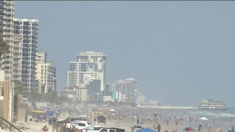 Volusia council votes to keep ban against dogs on beach