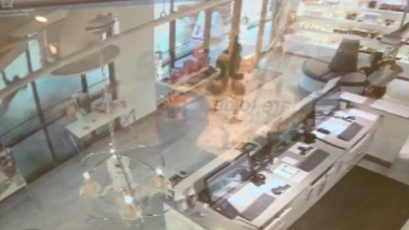 Video shows car crashing into pedestrian outside The Villages salon.