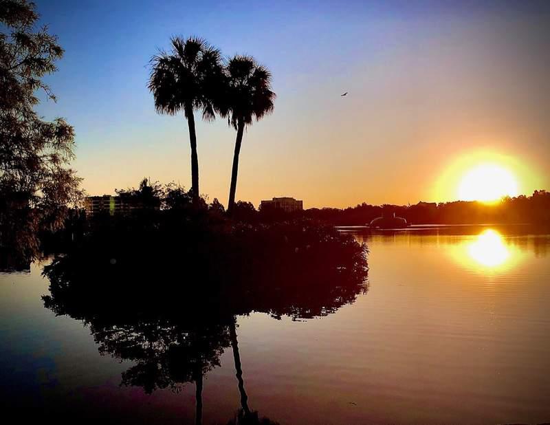 Sunrise over Lake Eola in Orlando. (Image: James Gosselin/WKMG)