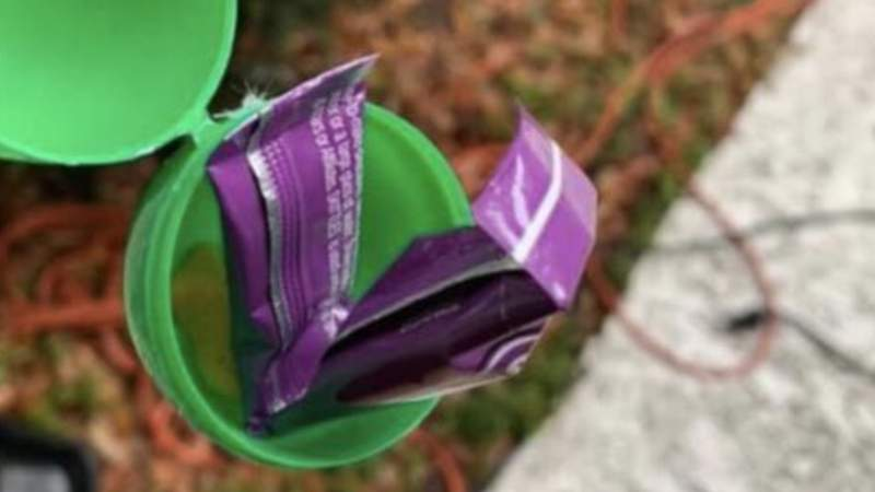 Flagler deputies say residents were shocked to find Easter eggs with porn inside placed in their mailboxes.