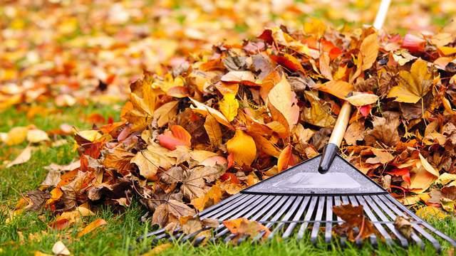 photo from click2houston.com
