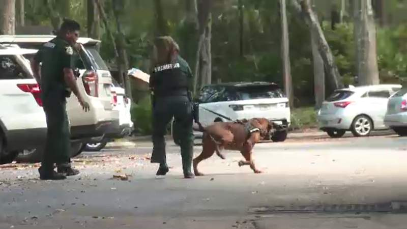 Orange County deputies search the grounds around Sabal Club apartments, looking for clues in Miya Marcano's disappearance