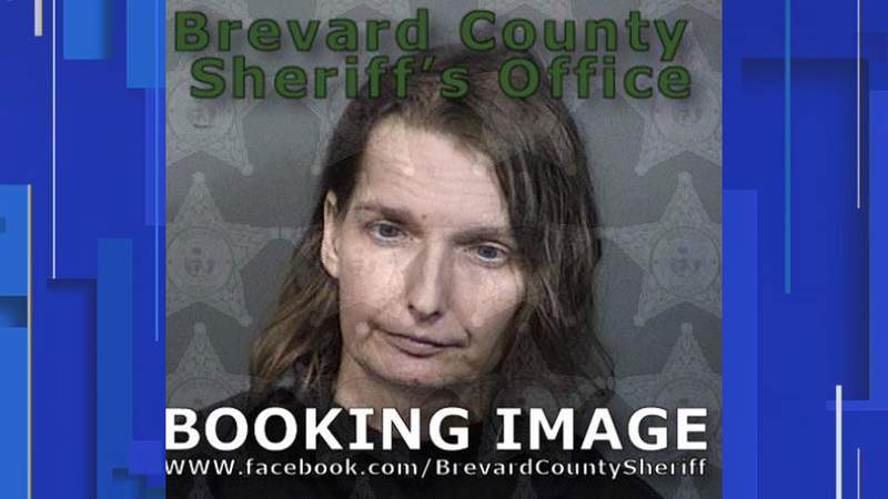Melissa Doss is facing three charges of child neglect and one charge of aggravated child abuse.